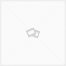 Tinta Acrílica System3 Burnt Umber #223 – 250ml